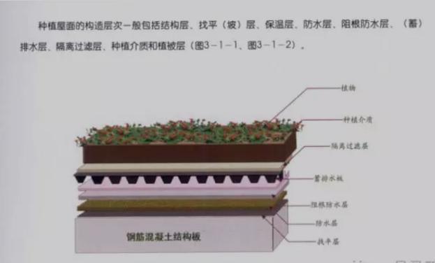建筑物中排水层构造图
