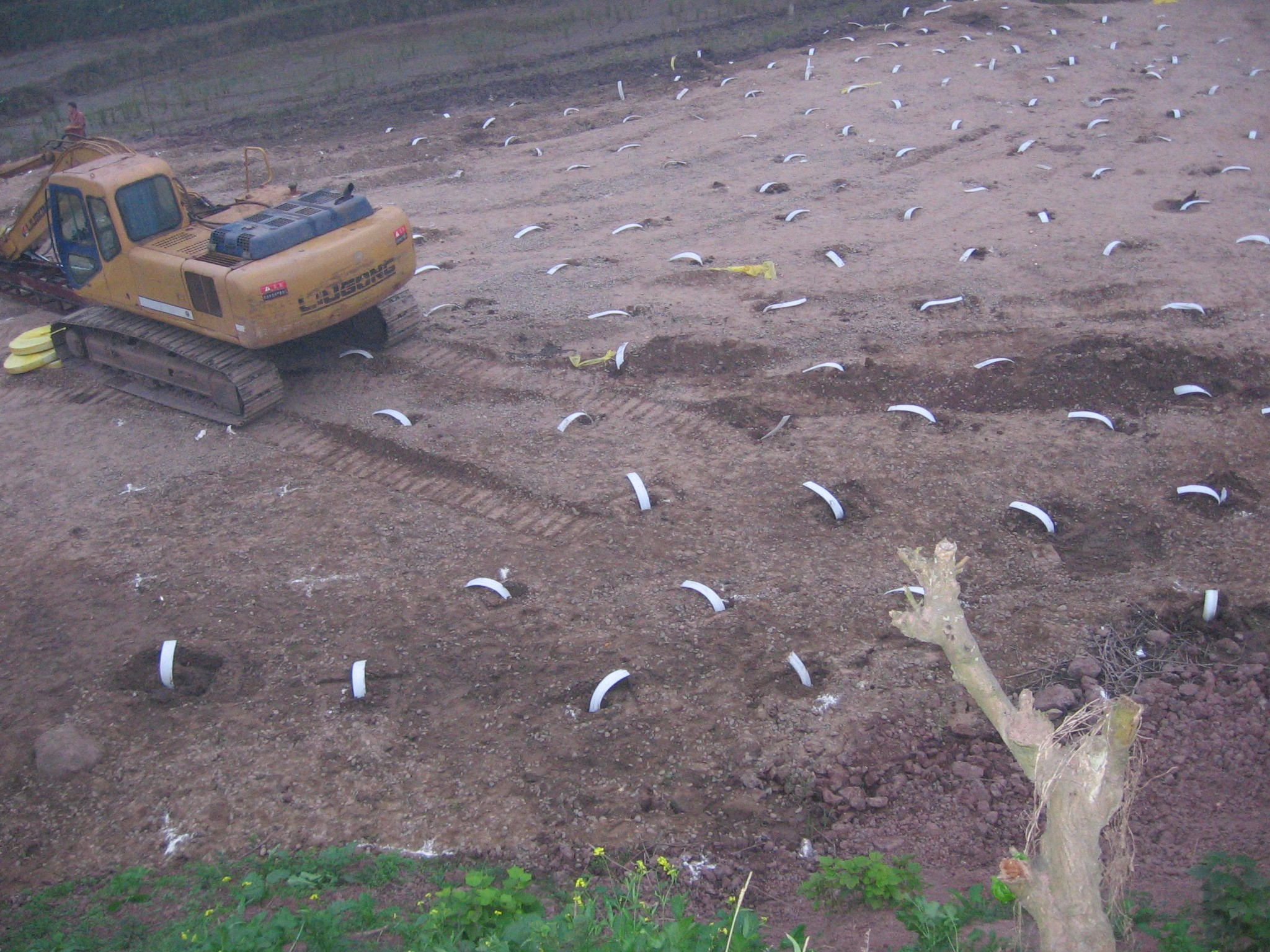 塑料排水板处理软土地基案例--湖北某工程现场
