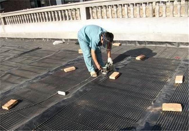 工程方大量购买塑料排水板后的反馈图