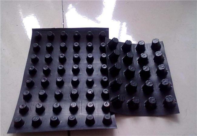 不同规格的排水板展示