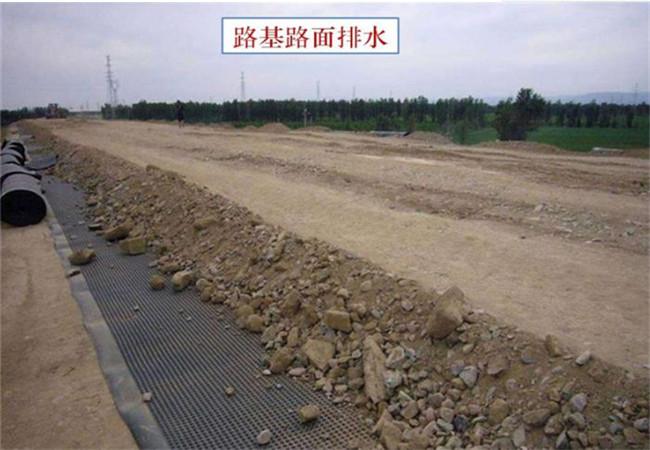 绿化排水板施工场景