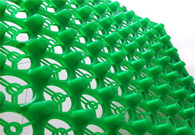 绿色蓄排水板细节