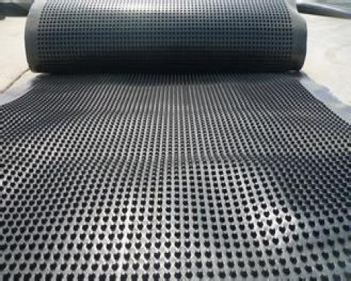 楼顶排水板【山东共建厂家 楼顶专用排水板】